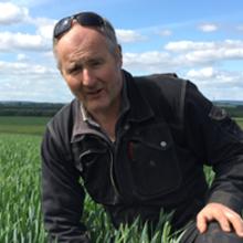 Dags att lägga om svampstrategi i växtodlingen